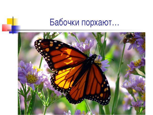 Бабочки порхают…