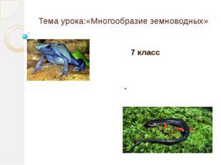 Тема урока:«Многообразие земноводных» 7 класс .