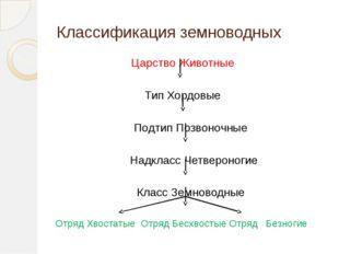 Классификация земноводных Царство Животные Тип Хордовые Подтип Позвоночные На