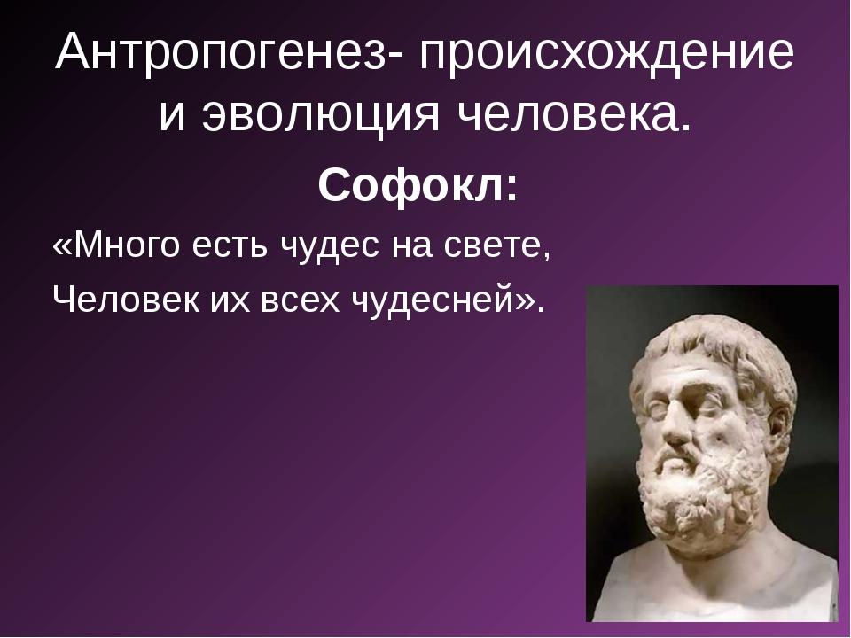 Антропогенез- происхождение и эволюция человека. Софокл: «Много есть чудес на...