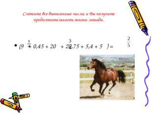 Сложите все выписанные числа, и Вы получите продолжительность жизни лошади. (