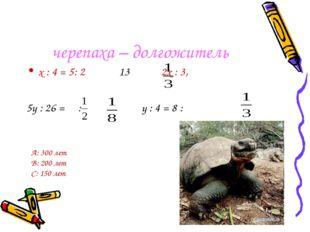 черепаха – долгожитель х : 4 = 5: 2 13 2х : 3, 5у : 26 = : у : 4 = 8 : А: 300