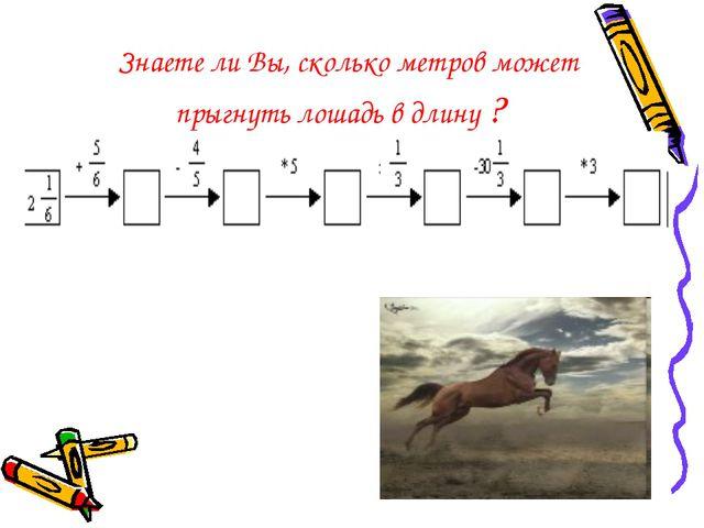 Знаете ли Вы, сколько метров может прыгнуть лошадь в длину ?