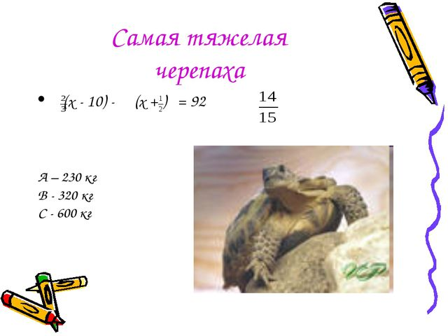Самая тяжелая черепаха (x - 10) - (x + ) = 92 А – 230 кг В - 320 кг С - 600 кг