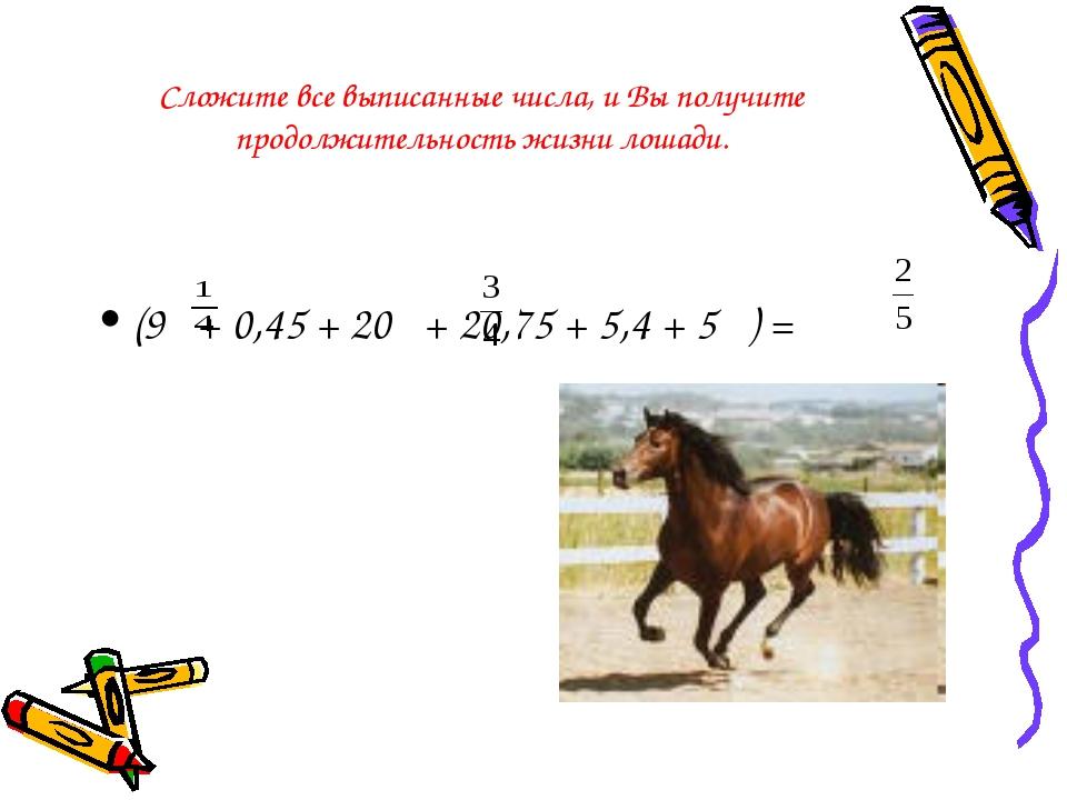 Сложите все выписанные числа, и Вы получите продолжительность жизни лошади. (...