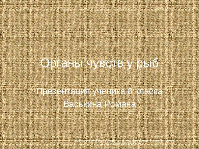 Органы чувств у рыб Презентация ученика 8 класса Васькина Романа Образователь...