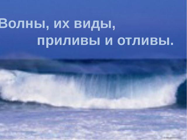 Волны, их виды, приливы и отливы.