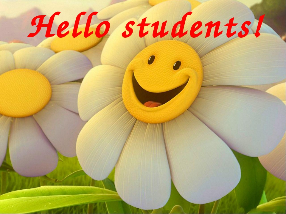 Hello students!