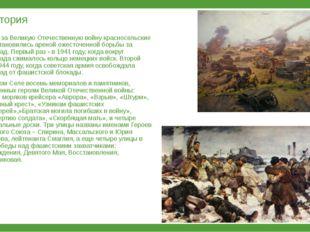 История Дважды за Великую Отечественную войну красносельские земли становилис