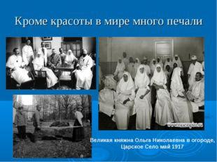 Кроме красоты в мире много печали Великая княжна Ольга Николаевна в огороде,