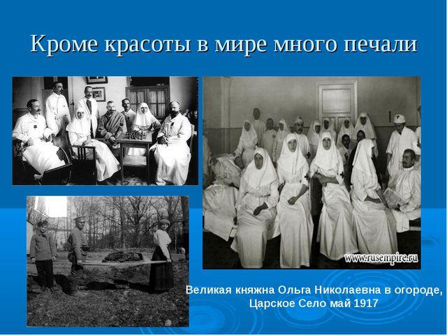 Кроме красоты в мире много печали Великая княжна Ольга Николаевна в огороде,...