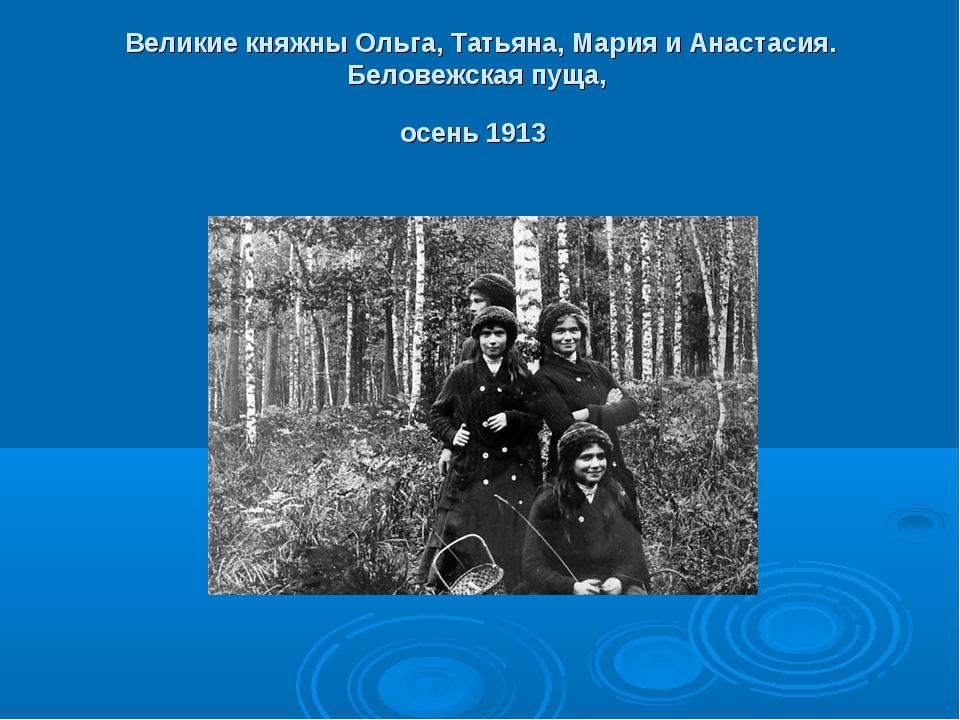 Великие княжны Ольга, Татьяна, Мария и Анастасия. Беловежская пуща, осень 1913