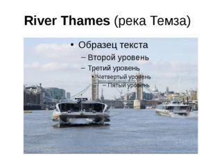 River Thames (река Темза)