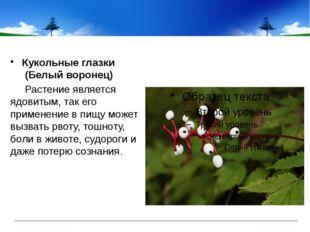 Кукольные глазки (Белый воронец) Растение является ядовитым, так его примен