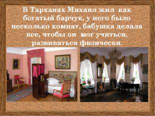В Тарханах Михаил жил как богатый барчук, у него было несколько комнат, бабу