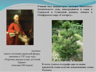 Пе́тер Симо́н (Пётр-Симо́н)Палла́с положил начало изучению крымской флоры,