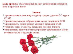 Цель проекта: облагораживание мест захоронения ветеранов ВОВ и братских могил