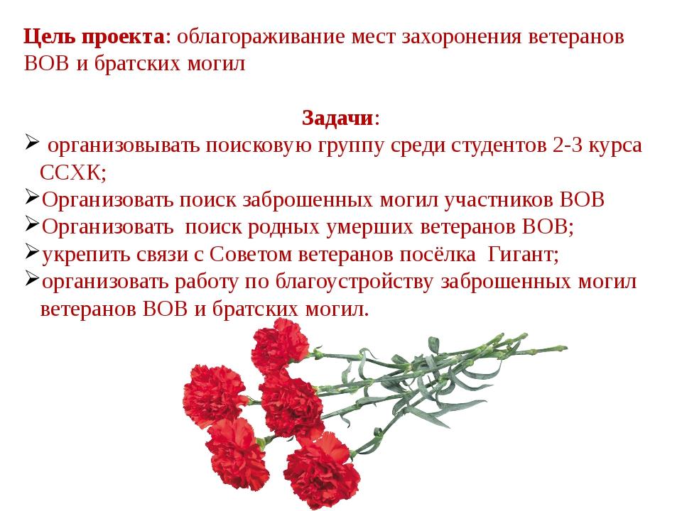Цель проекта: облагораживание мест захоронения ветеранов ВОВ и братских могил...