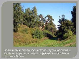 Валы и рвы (около 550 метров) дугой опоясали Княжью гору, на концах обрываясь