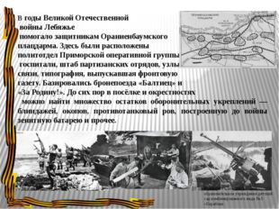 В годы Великой Отечественной войны Лебяжье помогало защитникам Ораниенбаумско