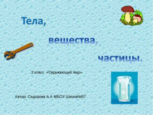 Автор: Сидорова А.А МБОУ Школа№57 3 класс «Окружающий мир»