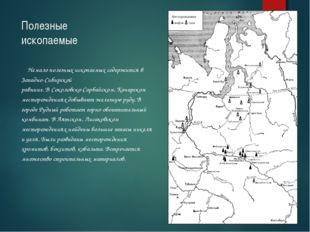 Полезные ископаемые Немало полезных ископаемых содержится в Западно-Сибирской