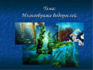 Тема: Многообразие водорослей.