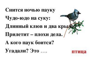 птица Снится ночью пауку Чудо-юдо на суку: Длинный клюв и два крыла, Прилетит