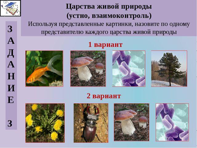 Царства живой природы (устно, взаимоконтроль) Используя представленные картин...