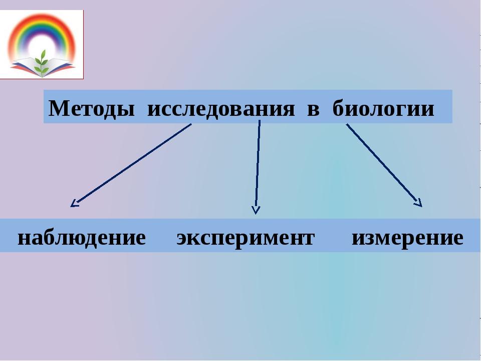 Методы исследования в биологии наблюдение эксперимент измерение
