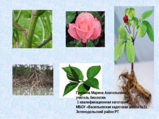Гришина Марина Анатольевна, у учитель биологии. 1 квалификационная категория