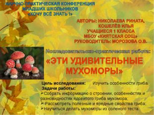 Цель исследования: Изучить особенности гриба. Задачи работы: Собрать информа