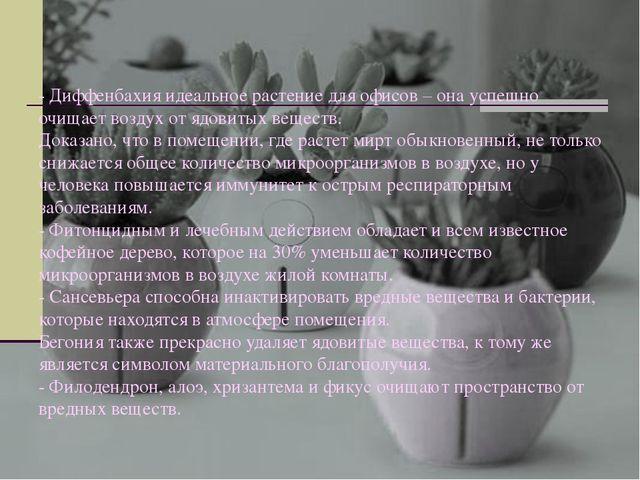 - Диффенбахия идеальное растение для офисов – она успешно очищает воздух от я...