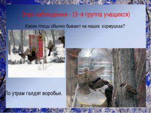 Этап наблюдения - (3–я группа учащихся) Какие птицы обычно бывают на наших ко