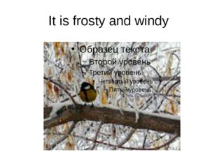 It is frosty and windy