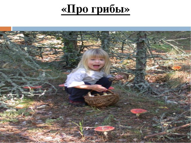 «Про грибы»