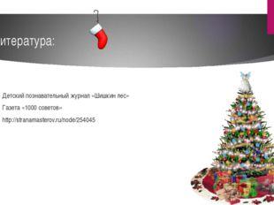Литература: Детский познавательный журнал «Шишкин лес» Газета «1000 советов»