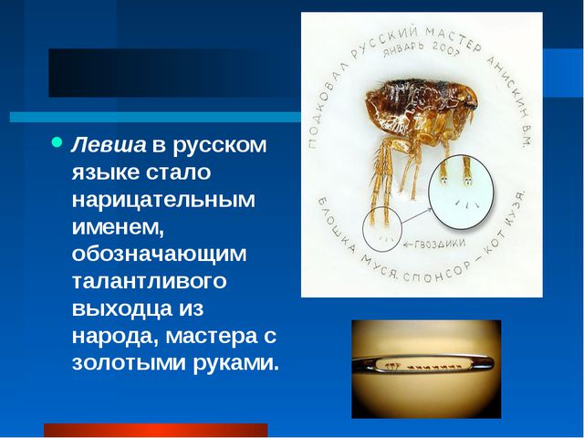 Левша в русском языке стало нарицательным именем, обозначающим талантливого в...