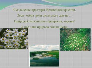 Смоленские просторы-Волшебной красоты. Леса , озёра ,реки ,поля ,луга ,цветы
