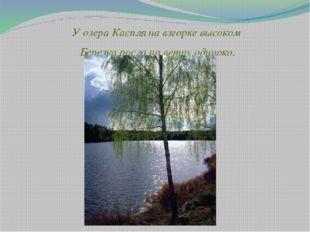 У озера Каспля на взгорке высоком Березка росла на ветру одиноко.