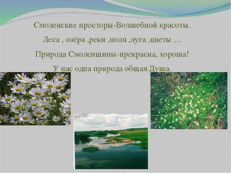 Смоленские просторы-Волшебной красоты. Леса , озёра ,реки ,поля ,луга ,цветы...