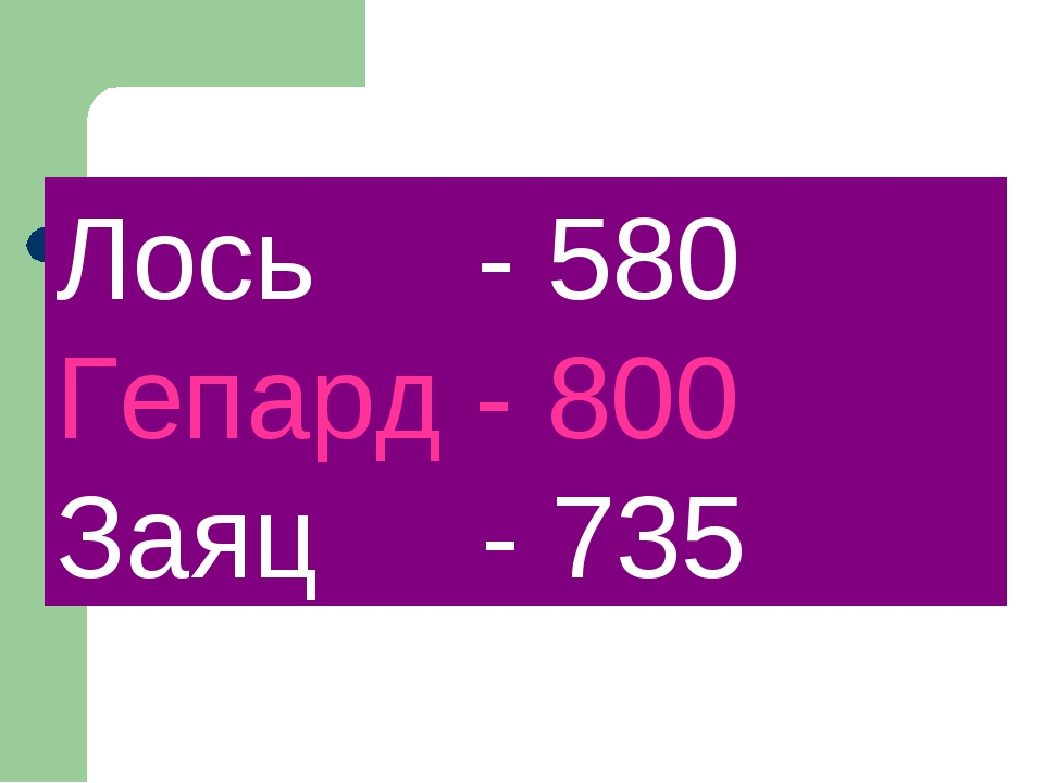 Лось - 580 Гепард - 800 Заяц - 735