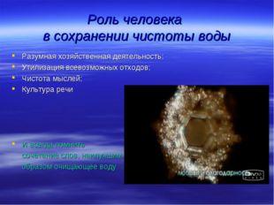 Роль человека в сохранении чистоты воды Разумная хозяйственная деятельность;