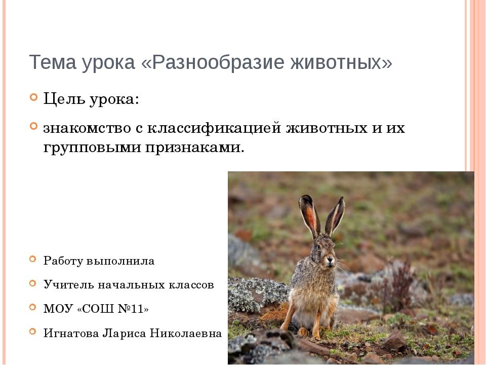Тема урока «Разнообразие животных» Цель урока: знакомство с классификацией жи...