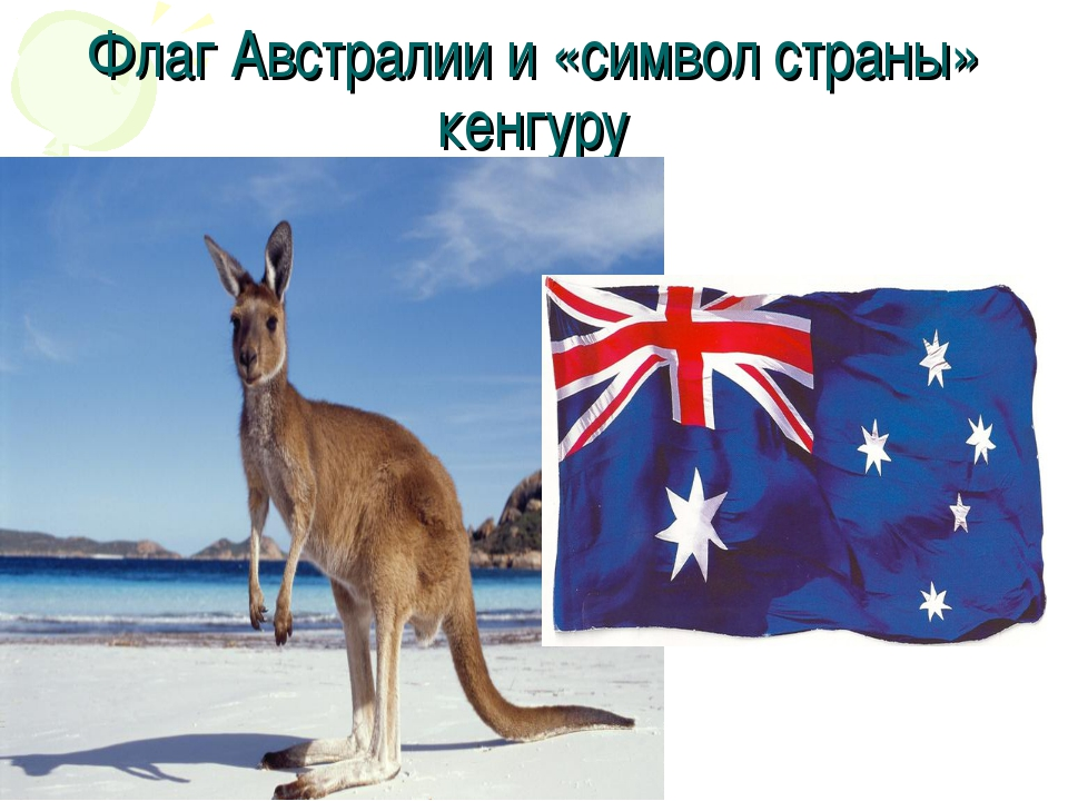 Флаг Австралии и «символ страны» кенгуру