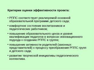 Критерии оценки эффективности проекта: РППС соответствует реализуемой основно