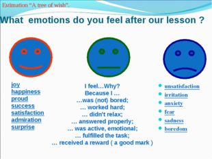 What emotions do you feel after our lesson ? unsatisfaction irritation anxiet