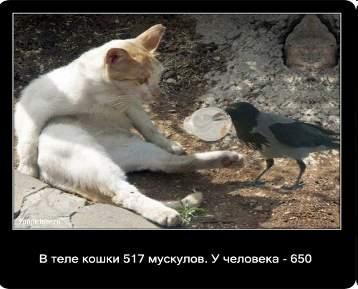 hello_html_m6bc8c92a.jpg