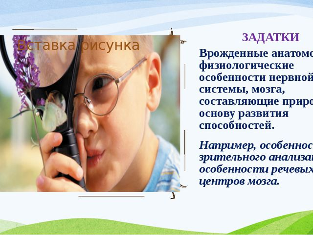 ЗАДАТКИ Врожденные анатомо-физиологические особенности нервной системы, мозга...