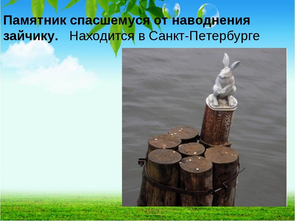 Памятник спасшемуся от наводнения зайчику. Находится в Санкт-Петербурге